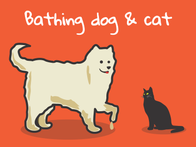 Bathing dog & cat