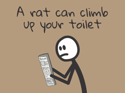 A rat can climb up your toilet